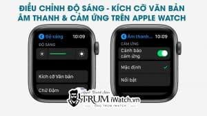 Điều chỉnh độ sáng - Kích cỡ văn bản - Âm thanh & cảm ứng Apple Watch