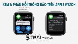 Hướng dẫn cách xem và phản hồi thông báo trên Apple Watch