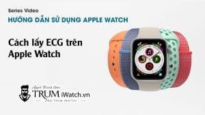Hướng dẫn cách lấy ECG trên Apple Watch